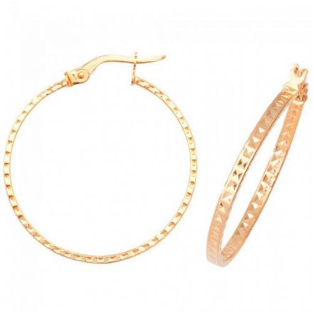 Just Gold Earrings -9Ct Dia Cut Earrings, ER654